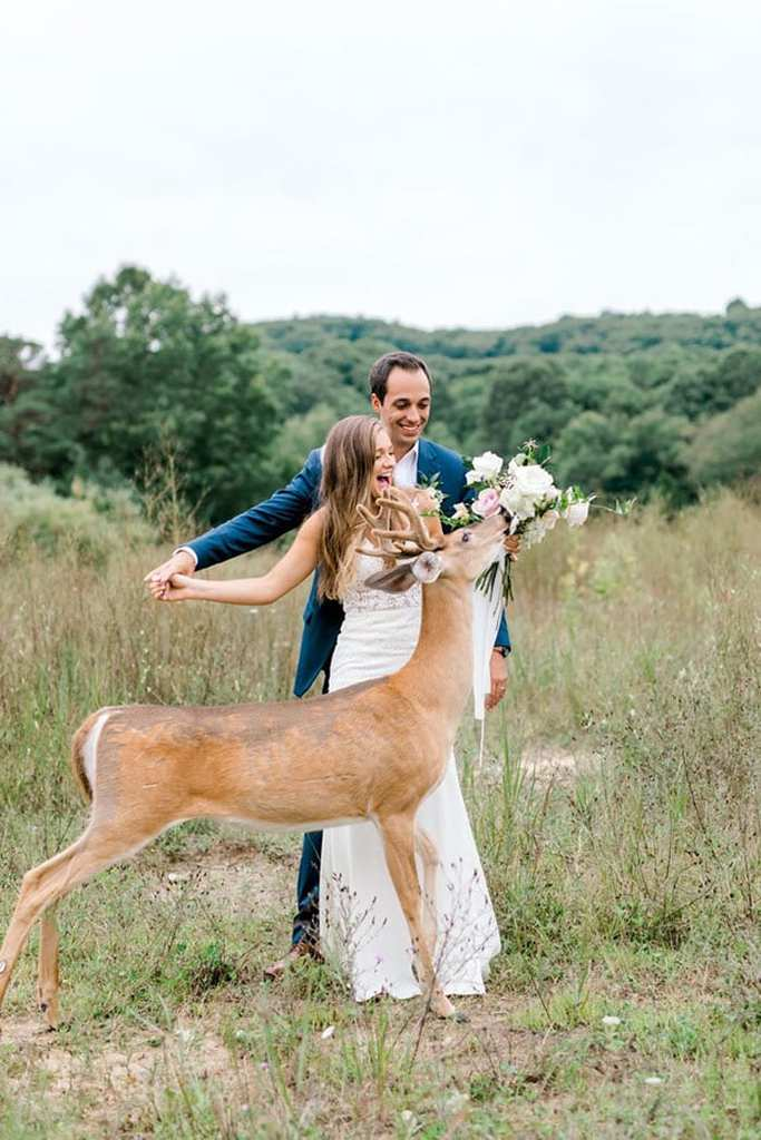 Wedding Deer 6